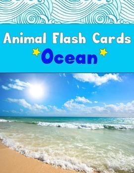 Realia Photo Animal Flash Cards - Ocean