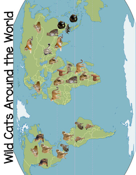Realia Photo Animal Flash Cards - Wild Cats Around the World (Map Included)