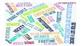 Realidades 2 1B Fly Swatter Matamoscas Vocab Game
