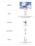 Realidades 2 Chapter 2B Vocabulary Flashcards -Large