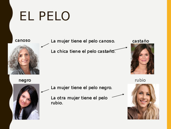 Realidades 5B Vocabulary PowerPoint PPT