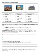 Realidades I 6B Videohistoria Extension Worksheet and Activities