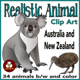 Australian Animal Clip Art