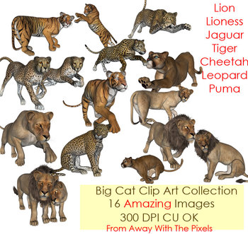 Realistic Big Cat Clip Art Collection - Amazing Graphics!