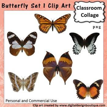 Realistic Butterflies Set 1 Clip Art - Color - personal & commercial use