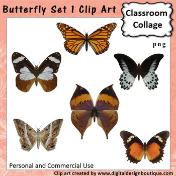 Realistic Butterflies Set 1 Clip Art - Color - personal & commercial use