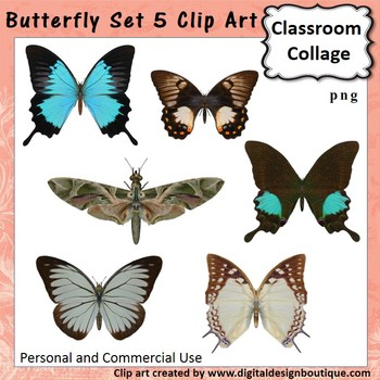 Realistic Butterflies Set 5 Clip Art - Color - personal & commercial use