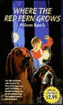 Realistic Fiction Book Report 8th Grade