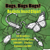 Realistic Insect Clipart - White fill and black lines - Co