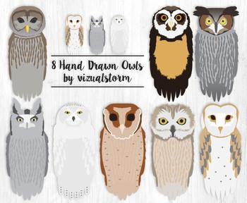 Realistic Owl Clip Art, 8 Hand Drawn Birds, Woodland Wildlife Illustrations