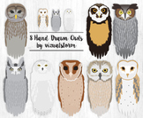 Realistic Owl Clip Art, 8 Hand Drawn Birds, Woodland Wildl