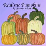 Pumpkins Realistic Free Clip Art
