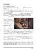 Rear Window - Plot Summary as Cloze Test