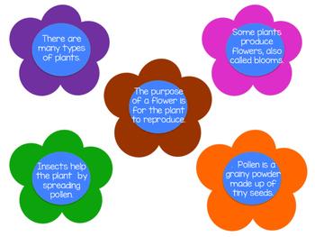 Reasoning Facts Versus Opinions Spring/Summer (Speech & Language CCSS)