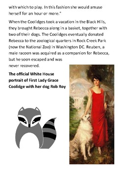 Rebecca the Presidents raccoon Handout