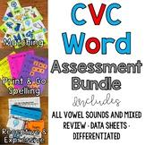 Receptive & Expressive CVC Word Assessment