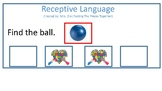 Receptive Language for student with autism and development