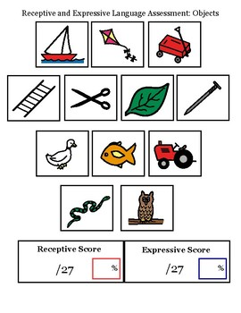 Receptive and Expressive Vocabulary Assessment:  Objects and Body Parts
