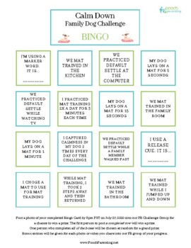 Cooking and Community Service Activity: The PB&J Project