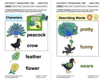 Recognize Sensory Details – Sight: Lesson 8, Book 17 (Newitt Literature Series)