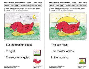Recognize Sensory Details – Sound: Lesson 7, Book 17 (Newitt Literature Series)
