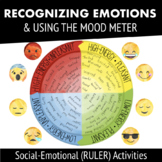 Recognizing Emotions + Mood Meter --RULER Social-Emotional