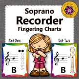 Recorder Fingering Charts for Soprano Recorder Music Room Décor (rainbow subtle)