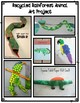 Recycled Rainforest Animal Art Project Parent Letter