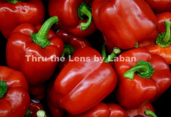 Red Bell Peppers Stock Photo #61