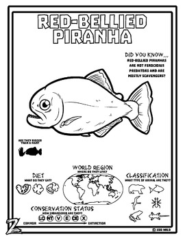 Red-Bellied Piranha -- 10 Resources -- Coloring Pages, Reading & Activities