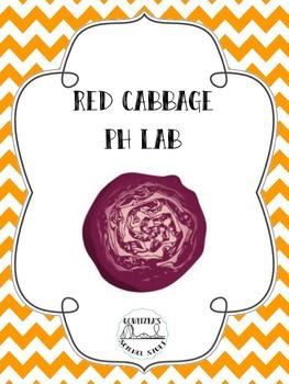 Red Cabbage pH Lab