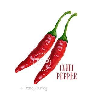 Red Chili Pepper clip art, garden clip art Printable Trace