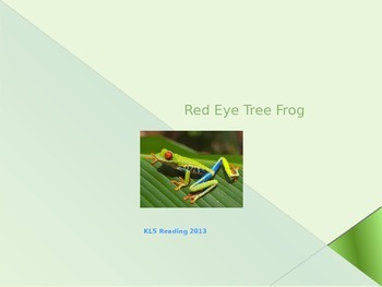 Red Eye Tree Frog - Power Point - Information Facts Pictures