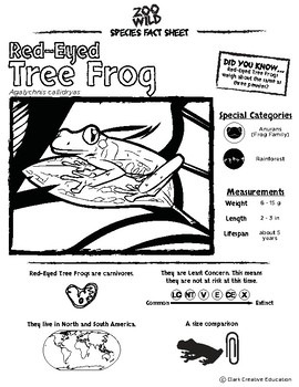 Red Eyed Tree Frog 10 Resources Coloring Pages Reading Activities