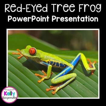 Red Eyed Tree Frog PowerPoint Presentation