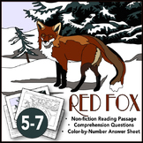Red Fox Nonfiction Reading Passage, Questions, and Color-by-Number Answer Sheet