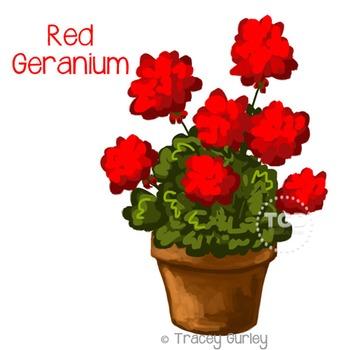 Red Geranium in Pot - geranium graphic Printable Tracey Gurley Designs