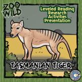 Tasmanian Tiger - 15 Resources - Leveled Reading, Slides & Activities