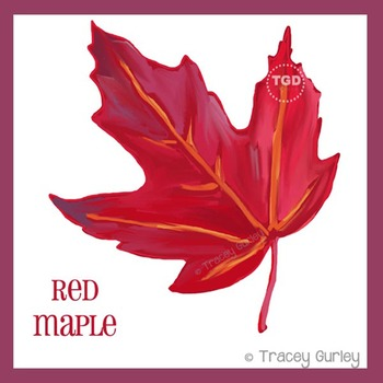Red Maple Leaf - autumn leaf clip art Printable Tracey Gurley Designs