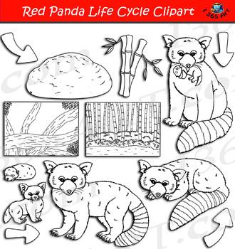 Cute School Clip Art Clipart Panda Free Clipart Images - Clip Art - Free  Transparent PNG Clipart Images Download