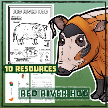 Red River Hog -- 10 Wildlife Resources -- Wild Animal Learning