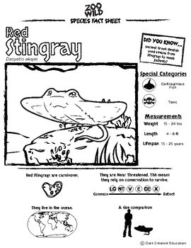 Red Stingray -- 10 Resources -- Coloring Pages, Reading & Activities