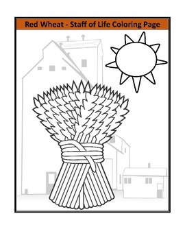 Red Wheat - Staff of Life, Reading Comprehension and Substitute Plan