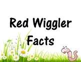 Red Wiggler Facts