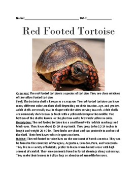 Red footed tortoise - lesson information article questions