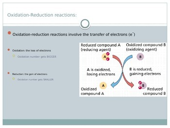 Redox & Oxidation Reactions Presentation (chemistry)