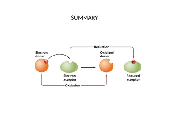 Reduction-Oxidation (Redox) Reaction Explained (Presentation and Handout)