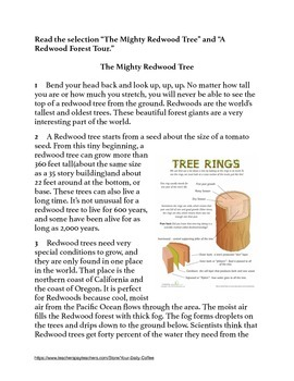 Redwood Forest~Paired Text with 3 Text Based Writing Prompts~No Prep~Earth Day