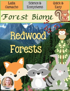 Forest Redwood Forests