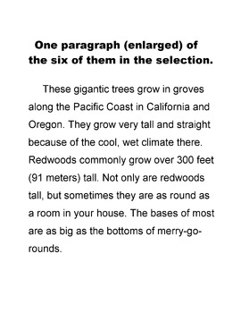 Redwood Trees: Giants of the Forest Lesson + 16 T/F and 5 Short Answer Questions